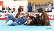 Exposicion_internacional_canina_talavera13